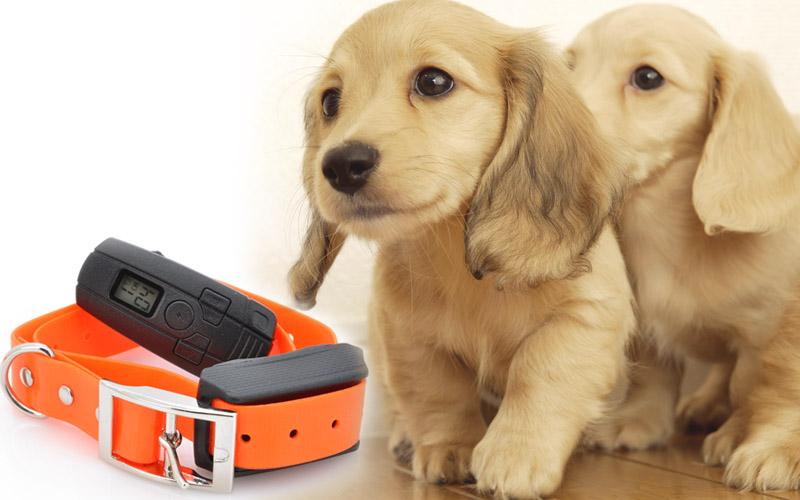 Dog shock training collar shock vibration tone modes 400 yard